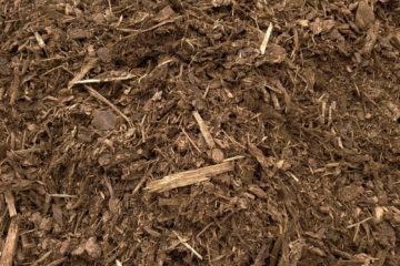 Medium Fir Mulch